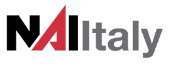 Logo NAItaly